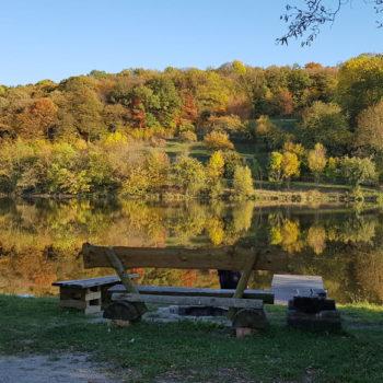 Herbstfarben (zwischen Nerkewitz und Lehesten); Kati Schenke