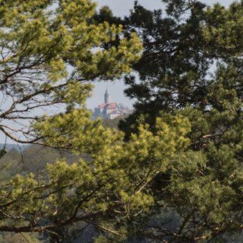 Leuchtenburg (am Kobersberg bei Altenberga); Friedhelm Petzke