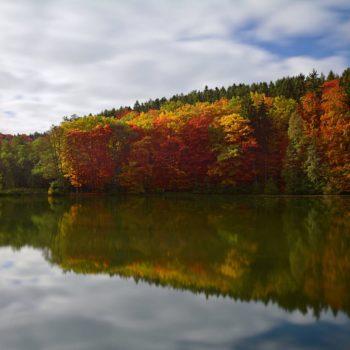 Herbststimmung im Rotehofbachtal (bei Geisenhain); Torsten Stempler