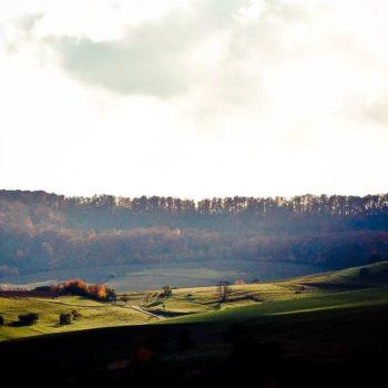 Sonnenkuss im Herbst (bei Löberschütz); Carolin Palik