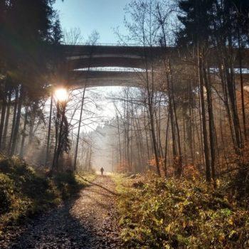 Zeitzgrund Autobahnbrücke; Heike Estel